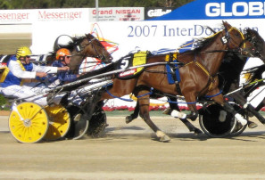 Breaking down the biggest problem facing the trots