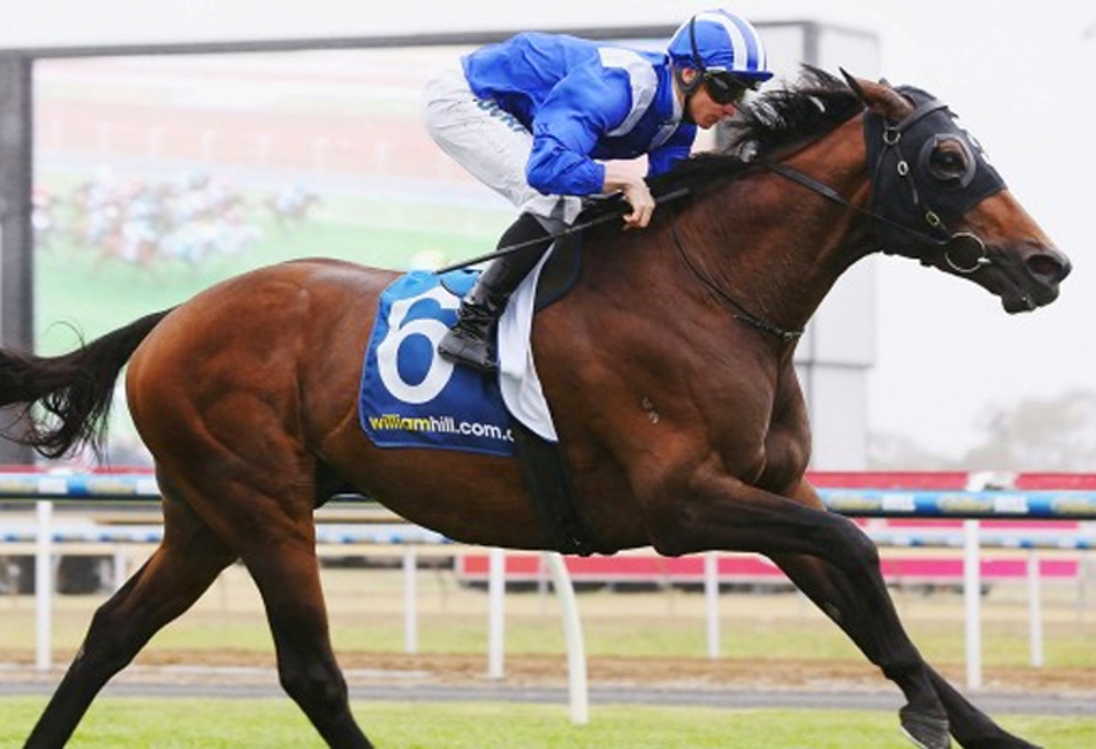 Almoonqith wins the Geelong Cup