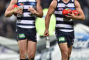 Patrick Dangerfield Joel Selwood Geelong Cats AFL 2016 tall <br /> <a href='http://www.theroar.com.au/2017/04/23/eight-quick-takes-afl-weekend-round-5/'>Eight quick takes from the AFL weekend: Round 5</a>