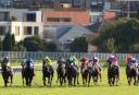 Queensland Oaks: Live race updates, results blog