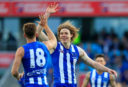 Ben Brown North Melbourne Kangaroos AFL 2017 <br /> <a href='http://www.theroar.com.au/2017/06/16/north-melbourne-vs-st-kilda-friday-night-forecast/'>North Melbourne vs St Kilda: Friday Night Forecast</a>