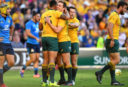 Wallabies dealt major blow with star back out for the year