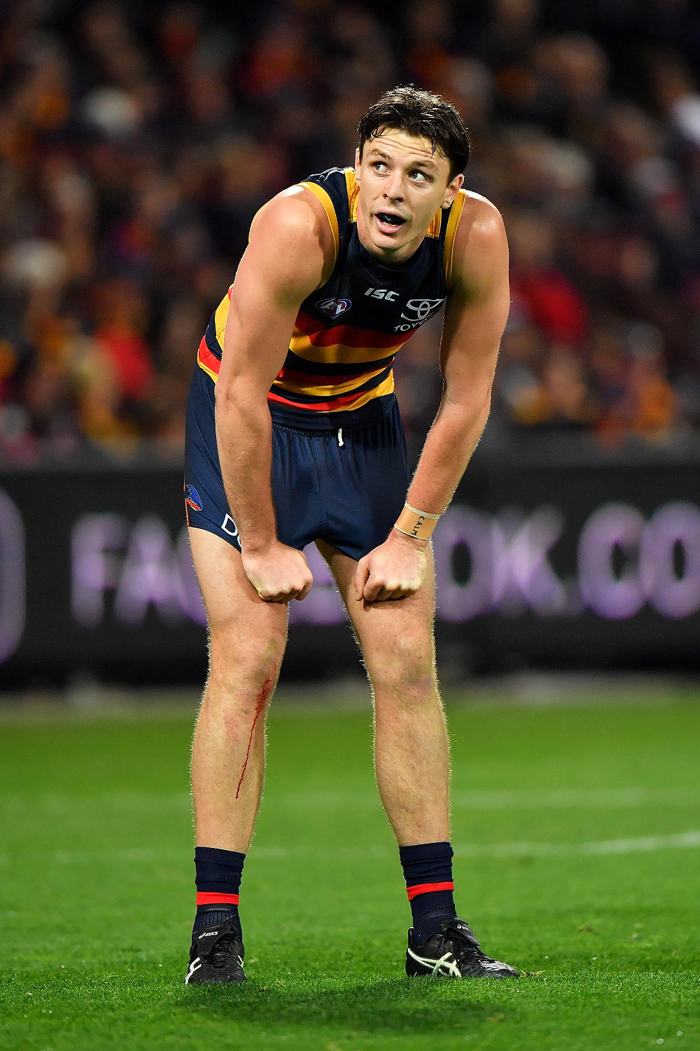 Jake Lever Adelaide Crows AFL 2017 tall