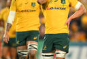 Michael Hooper Australia Rugby Union Championship Bledisloe Cup Wallabies 2017 tall <br /> <a href='http://www.theroar.com.au/2017/08/21/wrap-get-bledisloe-cup-myths-dispelled/'>The Wrap: Get your Bledisloe Cup myths dispelled here</a>