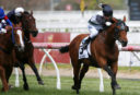 Melbourne Cup 2017: Place, Exacta, First 4 betting winners